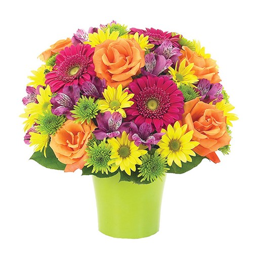 Brilliance Bouquet (BF123-11KM)